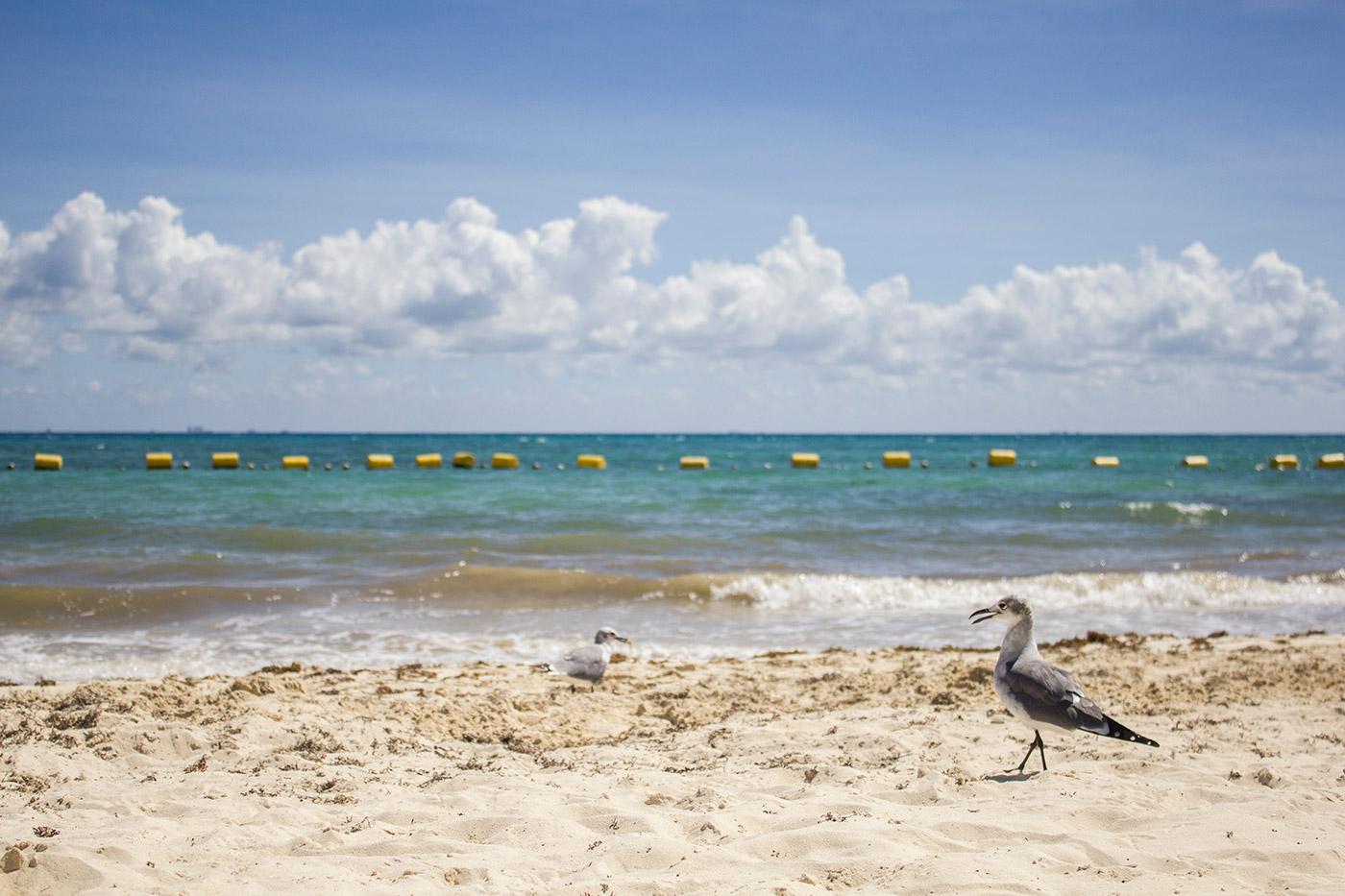 Playa del Carmen, México.